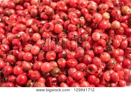 close up view  of red peppercorns background