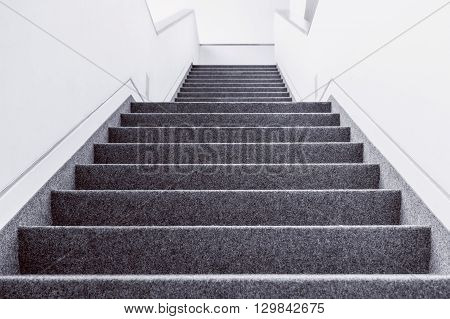 Low angle black and white picture of empty indoor steps