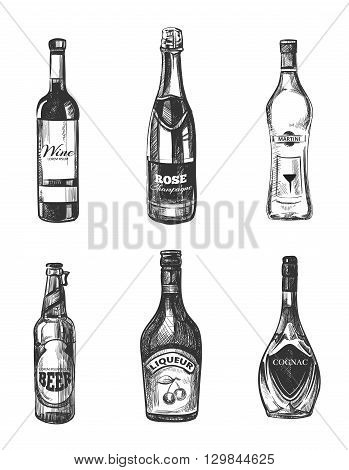 Alcoholic drinks in sketch hand drawn style. Alcohol drink for  restaurant menu, hand drawn bottle alcohol. Vector illustration