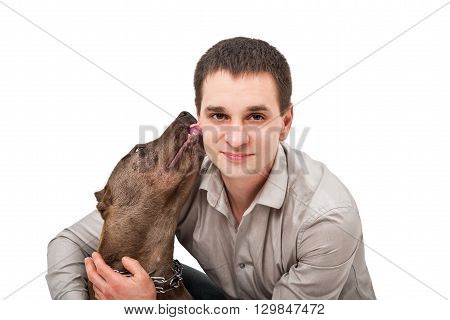 Portrait of a young man who licks pitbull isolated on white background