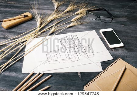 Closeup of construction sketch blank smart phone screen wheat spikes glasses and stationery on dark wooden desktop. Mock up