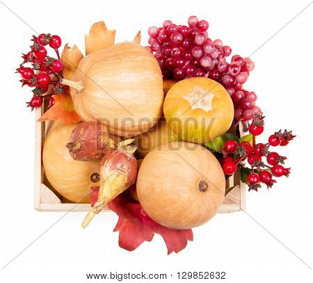 Ripe pumpkin and autumn berries in a wooden box view from above isolated on white background.