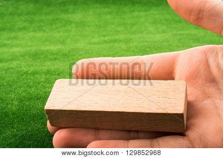 A wooden dominoes on a green grass