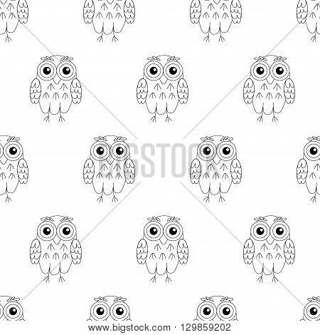 Owl birds vector seamless pattern. vector illustration owl.