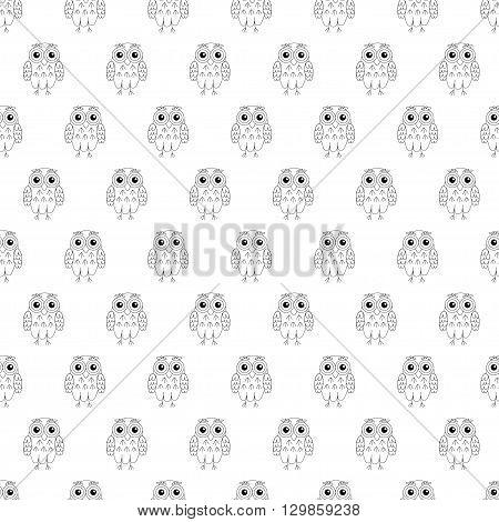 Owl vector seamless pattern. vector illustration owl.
