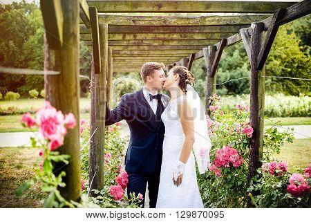 Newlyweds In Park Rosarium Next To Beautiful Pink Roses