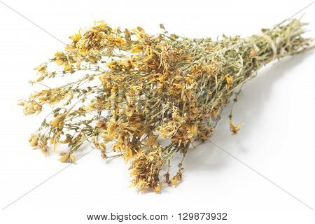 Dry twigs of St. John's wort as a bunch isolated on white background. The herb known also as Hypericum Perforatum.