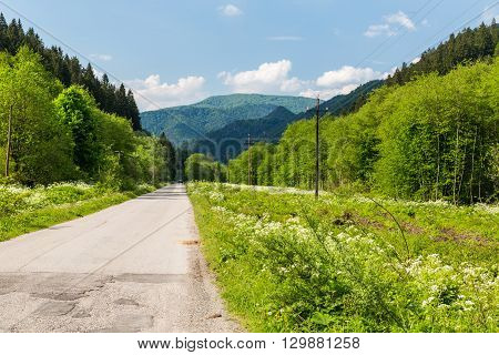 Nature In Lubochna Valley Near Ruzomberok In Slovakia