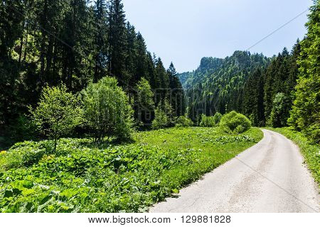 Nature In Liptov Region, Slovakia In Summer 2015
