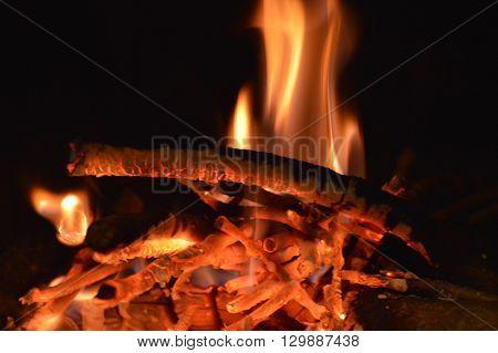 Llamas consumiendo la leña en una chimenea