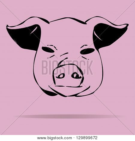 Pigs vector illustration on a colored background