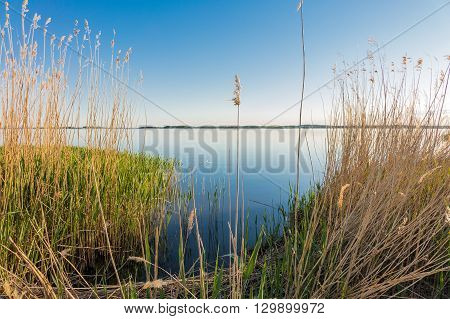 Lake in Zempin on the island Usedom (Germany).