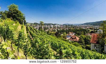 BADEN AARGAU SWITZERLAND - JUNE 30 2015: Vineyard from top to the city of Baden on June 30 2015. Baden is a municipality in the Swiss canton of Aargau located 25 km (16 mi) northwest of Zurich.