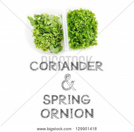 Coriander and spring onion in plastic box and partition raw material for cook on white background photo isolate in my kitchen and have design my font free hand word.
