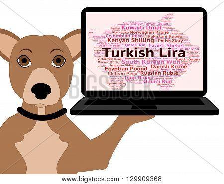 Turkish Lira Indicates Forex Trading And Coinage