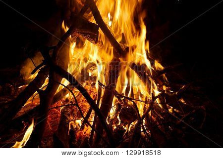 Camp fire burning in the night