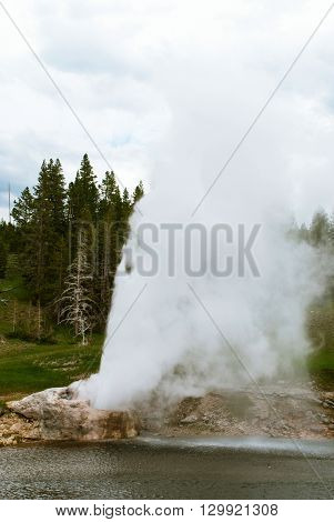 Situated on the bank of the Firehole River Riverside Geyser is one of the most picturesque and predictable geysers in Yellowstone National Park