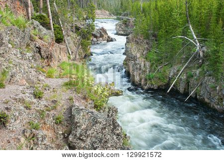 Beautiful Gibbon River winding between rocky shores in Yellowstone National Park