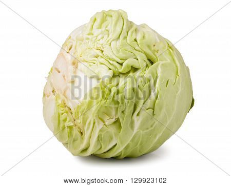 young head of cabbage isolated on white background.