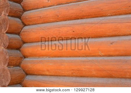 background of the log house log wall