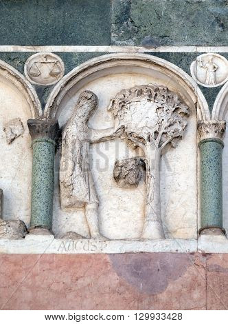 LUCCA, ITALY - JUNE 06, 2015: August, detail of the bas-relief representing the Labor of the months of the year, portal of the Cathedral of St Martin in Lucca, Italy, on June 06, 2015