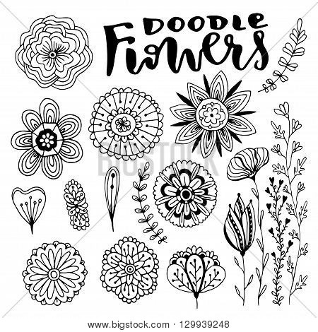 Flowers vector decorations set. Hand drawn vector illustration with creative doodle flowers. Vector set for coloring page and design decoration