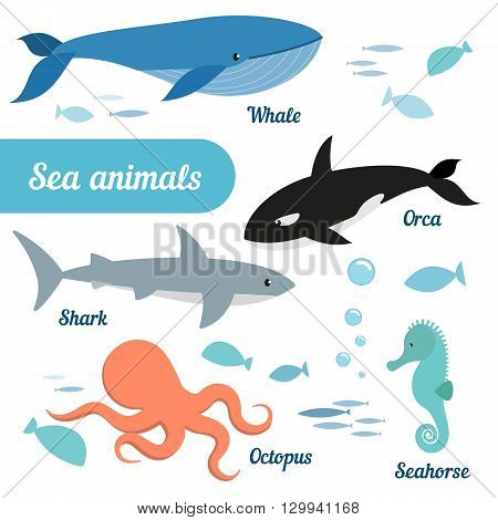 Set of sea animals - whale grampus octopus seahorse shark fish. Vector.