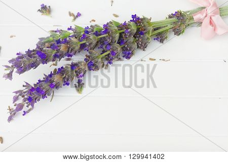 Fresh  cut lavender flowers  on white wooden table with copy space