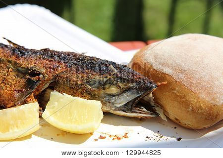 Barbecue with Mackerel on Stick in Germany
