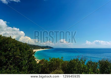 Summer Adriatic Sea coastline view with tree thistle plant and stone in front. wild beach in albania