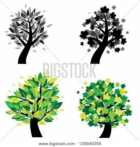 vector illustration of different trees. Trees with leaves