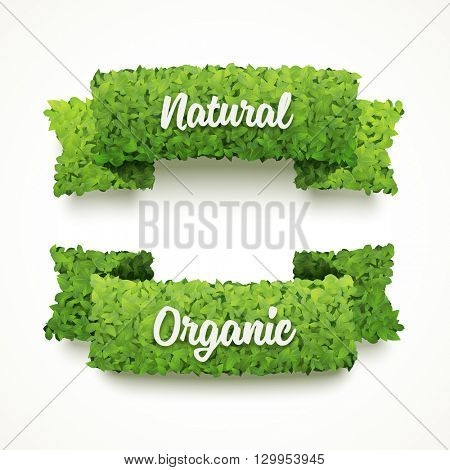 Vector banners made of green leaves. Natural and organic banner templates. Ecology banner design. Set of two banners.