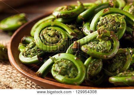 Raw Organic Green Fiddlehead Ferns
