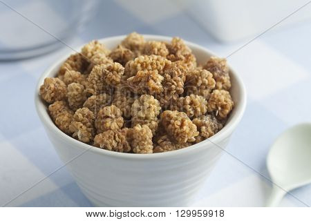 Bowl with healthy dried mulberries