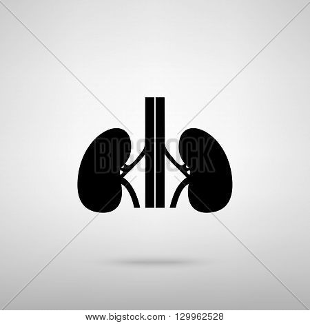 Human kidneys sign. Black with shadow on gray.