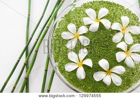 frangipani with leaf in bowl of and bamboo grove