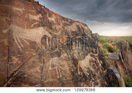 Petroglyph With Animals