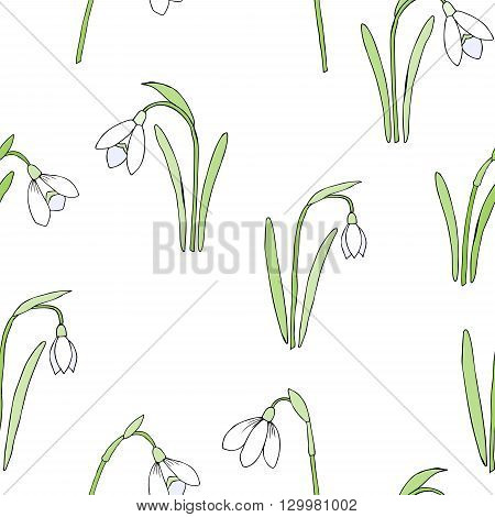 Seamless pattern with snowdrops. Hand drawn spring sketches flowers. Vector Illustration