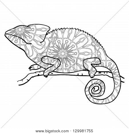 Zentangle style chameleon. Stylized vector animal isolated on white. Cute stylized lizard. Monochrome illustration with chameleon for adult coloring