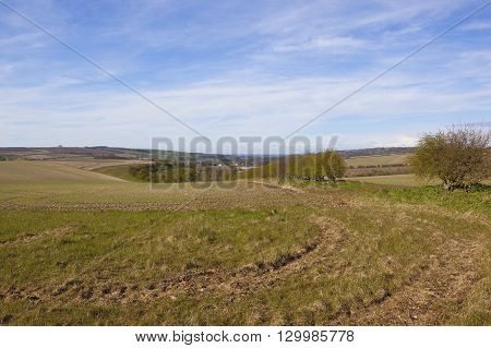 an english village in hillside scenery with a view of the vale of york under a blue cloudy sky in springtime