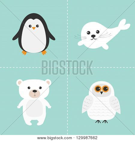 Arctic polar animal set. White bear owl penguin Seal pup baby harp. Kids education cards. Blue background. Isolated. Flat design. Vector illustration