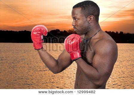 Boxer de hombre negro