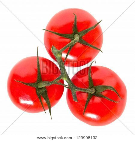 Three juicy freshly vine tomatoes on white background with clipping path.