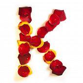 stock photo of red rose flower  - Rose petal letter - JPG