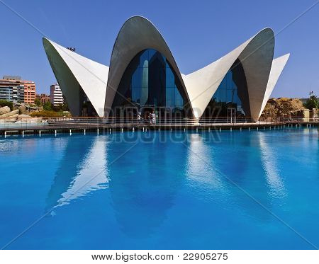 Oceanografic In The City Of Arts And Sciences Valencia, Spain