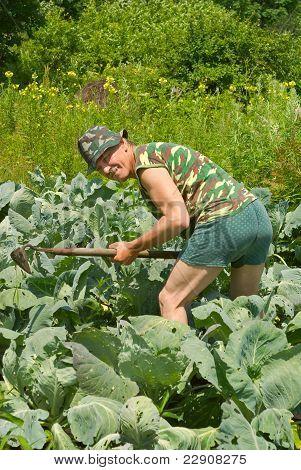 Gardener With Hoe