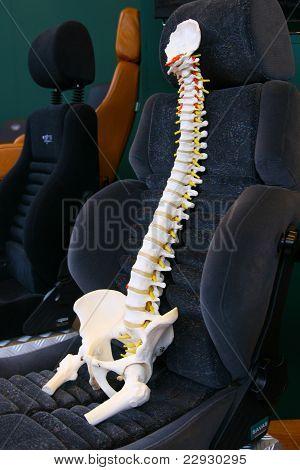 Coluna vertebral humana em um assento de carro