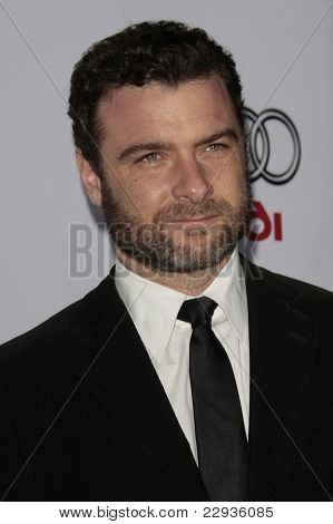 LOS ANGELES - NOV 9: Liev Schreiber at the closing night gala presentation of the 2008 AFI Fest of 'Defiance' held at the Cinerama Dome, Los Angeles, California on November 9, 2008