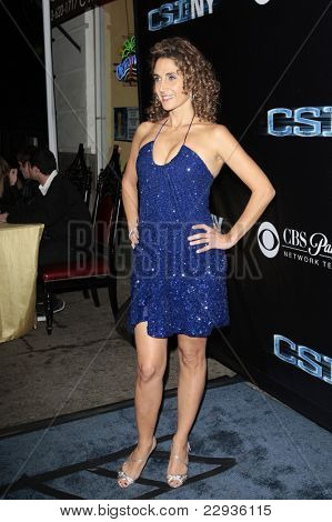 LOS ANGELES - NOV 1: Melina Kanakaredes at the CSI NY 100th episode party at the Edison Downtown, Los Angeles, California on November 1, 2008