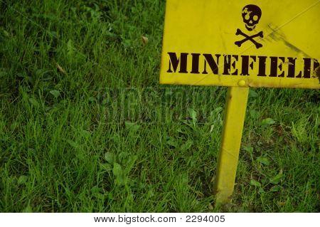 Dsc_4823_Minefield